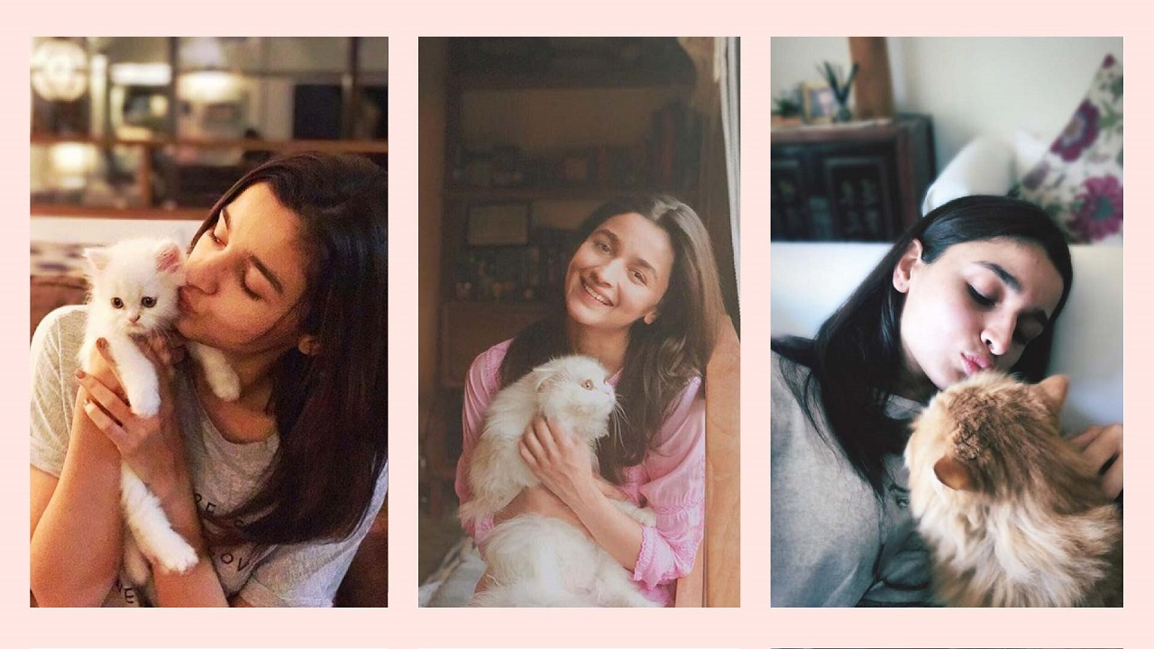bollywood celebs and pets